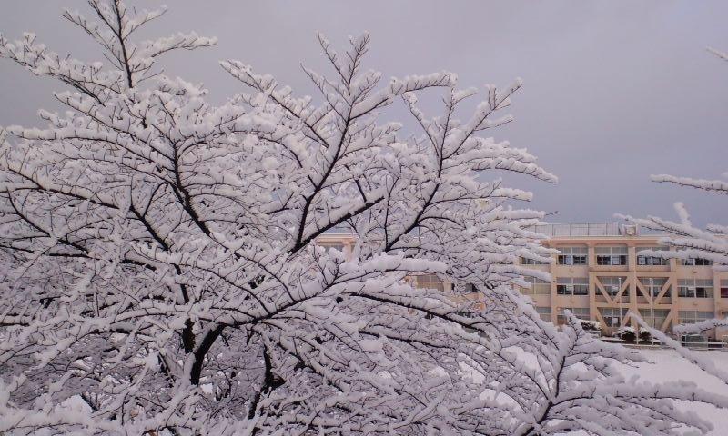 雪の華 長久手西小学校