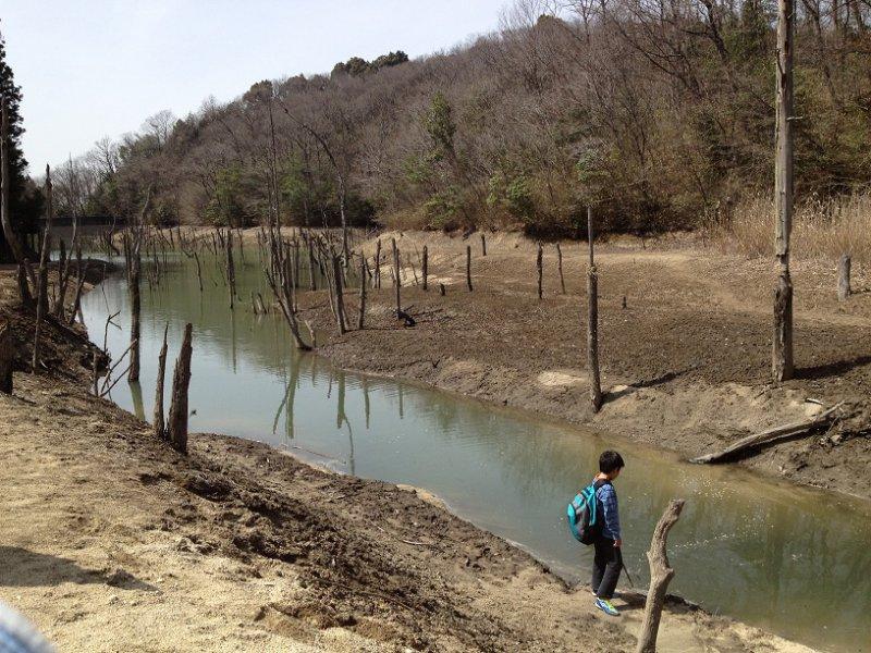 大正池(海上の森)