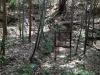 イノシシの罠(海上の森)