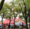 木下大サーカスは6月10日まで名古屋市白川公園内に!
